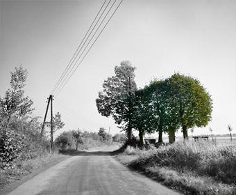 Fief Wunnen Baum und Steen in der Bauerschaft Altenburg bei Laer. Einer der Sammelpunkte der Hollandgänger im Kreis Steinfurt. Foto © Dietrich Hackenberg
