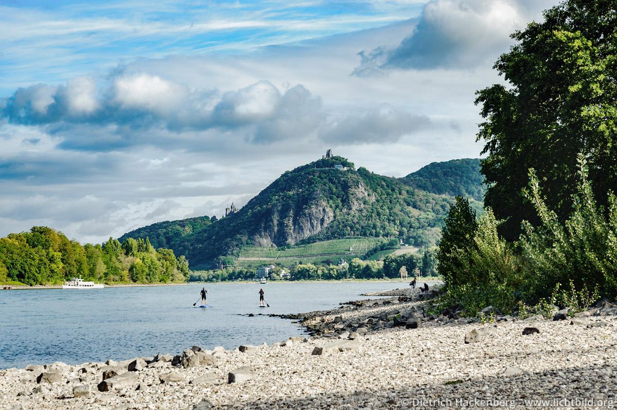 Drachenfels am Rhein von Insel Grafenwerth aus gesehen mit Stehpaddlern. Foto © Dietrich Hackenberg - www.lichtbild.org