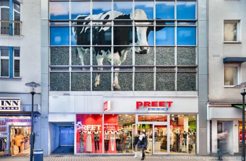 Brückstrasse 17 mit Kuhfassade vor dem Umbau. Kuh montiert von der Künstlerin Susanne Henning ziert das Gebäude über dem Modegeschäft Preet. Foto © Dietrich Hackenberg